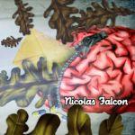 nicolas_falcon