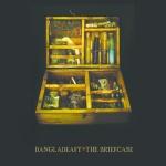 bangladeafy-briefcase