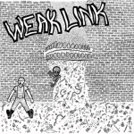 WeatLink-st