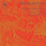 destructionunit-nfr