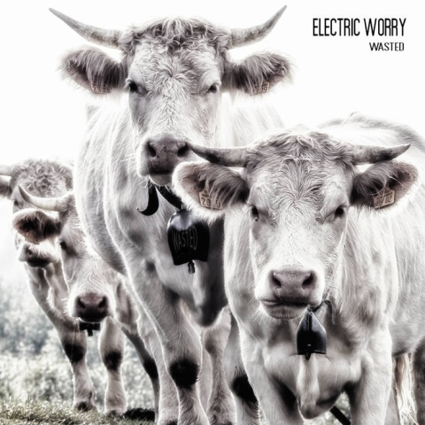 Electric Worry – Wasted