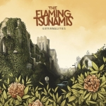 Flaming Tsunamis - Externalities