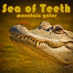 Sea of Teeth-Mountain Gator