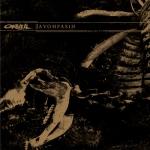 orwell-avohfasih