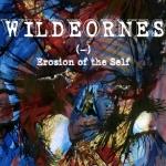wildeornes-erosion